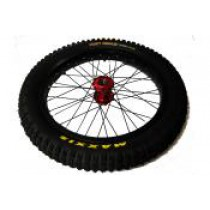 Front Wheel Set for 20 48v (12/13), 20E + 20R