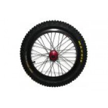 Rear Wheel Set for 20 48v (12/13) + 20E. With 36H Hub.