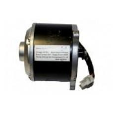 600w (24v) Motor for 12.5 Racing